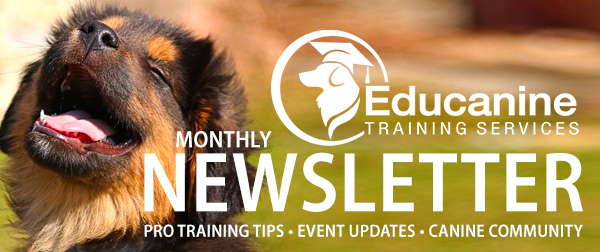 dog training monthly newsletter