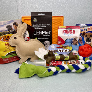 New Puppy Toys and Treats Survival Kit educanine training services lehigh valley pa